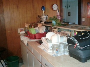 At least the dishes got done last night. Putting them away? Not as important in MY SCHEME OF THINGS.