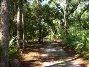 One of Lake Kissimmee State Park Service paths and trails