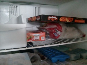 My almost empty freezer. You should see the big one. It has ICE and that's about it.