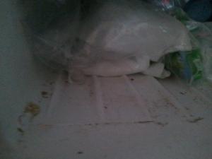 A dirty freezer