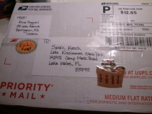My Package. Even the outside was Festive.