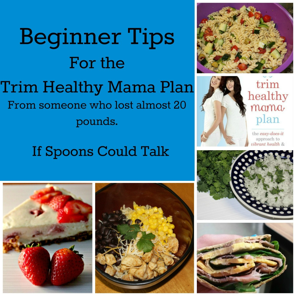 Trim Healthy Mama Tips for Beginners - If Spoons Could Talk